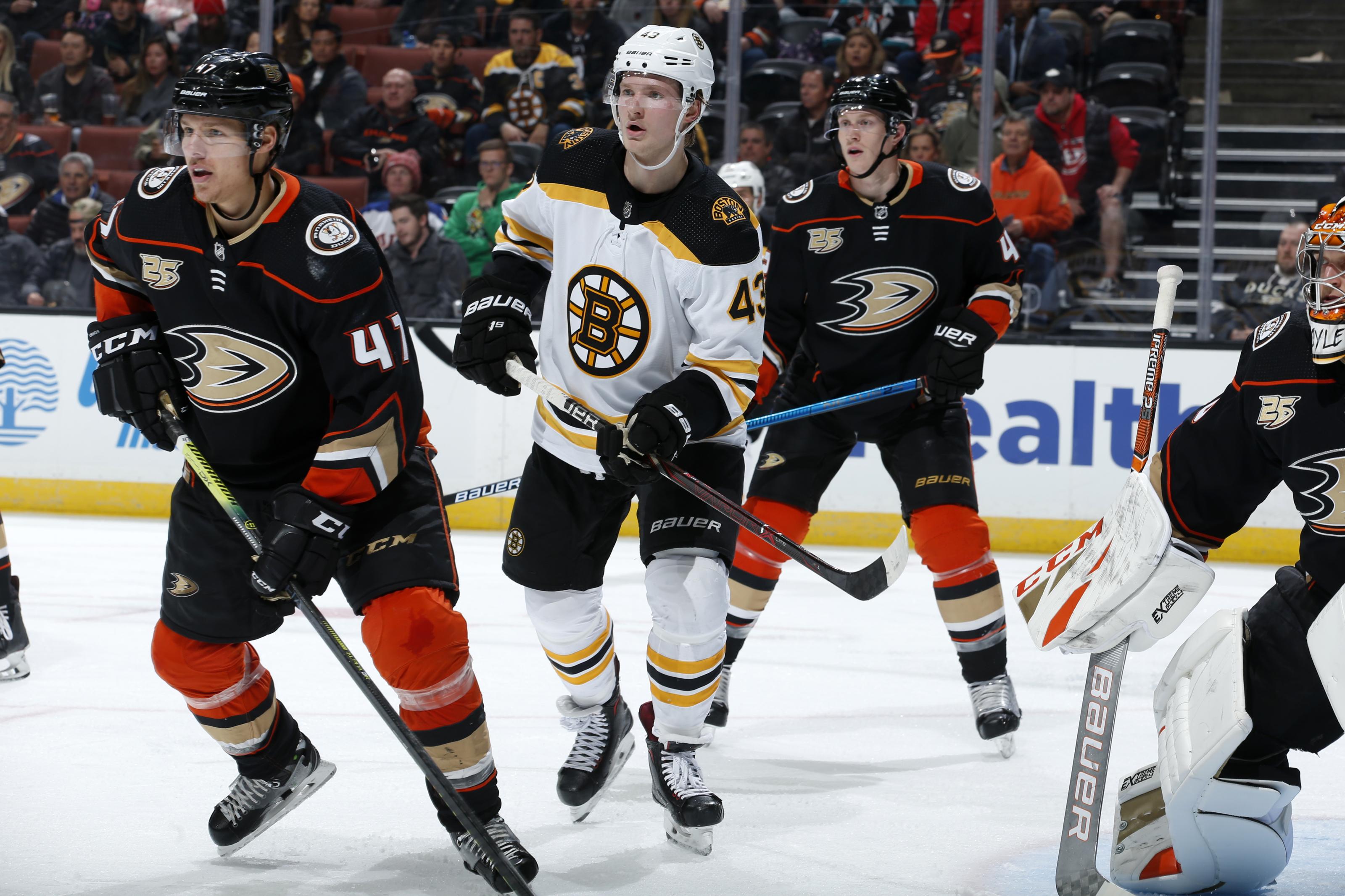 Anaheim Ducks Vs Boston Bruins Start Time Live Streaming Tv Info