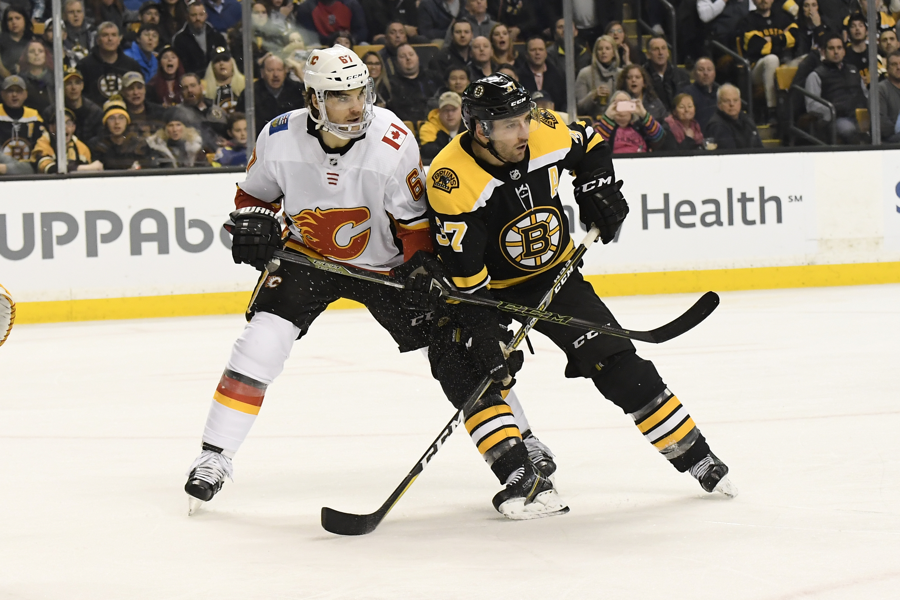 Boston Bruins: Boston Bruins Win Last Night Was A Statement To NHL